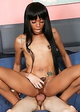 Slim black tgirl Kassidy Stixxx gets her ass pounded hard in this hot hardcore scene!